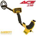 ace250 metal detector