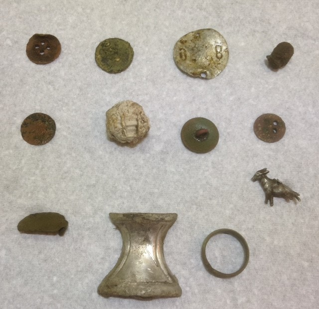 Metal Detector finds